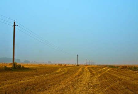 landscape with telegraph poles photo