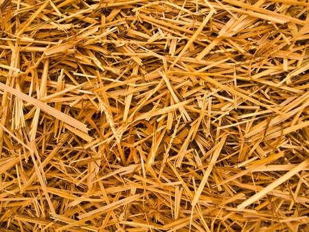 feedstock: straw background (macro v.)
