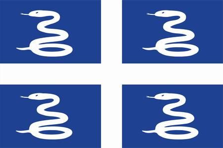 martinique: flag of Martinique,  french region
