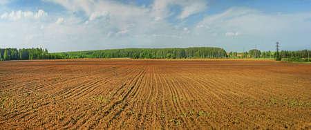 ploughed field: plowed field