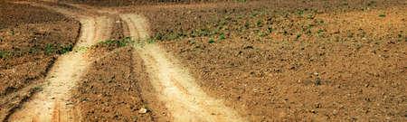long road: field road  Stock Photo