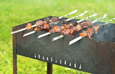 barbecue outdoors photo