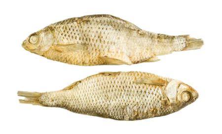 dry provisions: dried fish