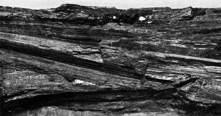 mineralization: raw black coal Stock Photo