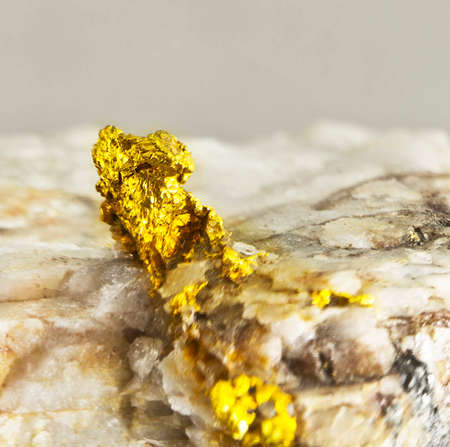 raw gold: native gold in quartz
