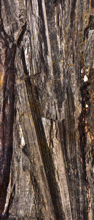mineralization: ironstone  haematite  Stock Photo