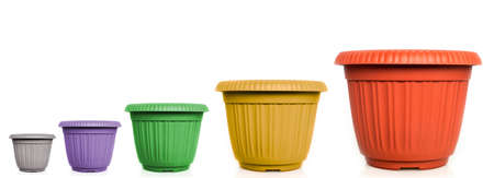 raising cans: growing flowerpots Stock Photo