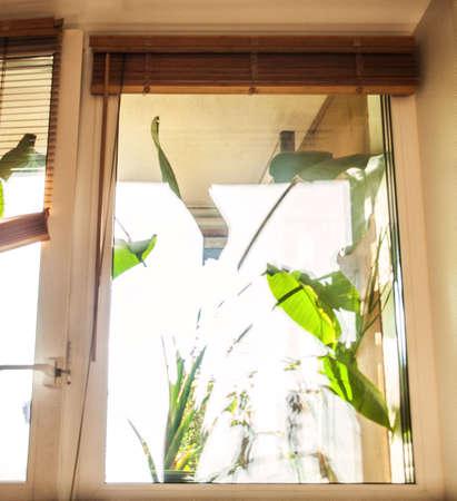 ventanas abiertas: ventana de su casa Foto de archivo