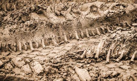 miry: tyre tracks