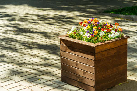 pavement: town wooden flowerbed