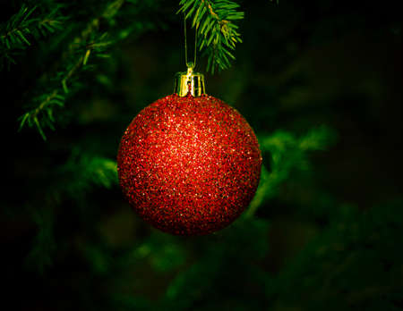 x mass: christmas ball on fir tree Stock Photo