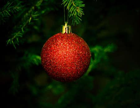 christmas tree ball: christmas ball on fir tree Stock Photo