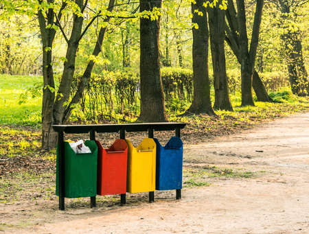 separately: separately recycle bin in forest