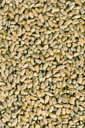 poured: poured by syrup sunflower seeds Stock Photo
