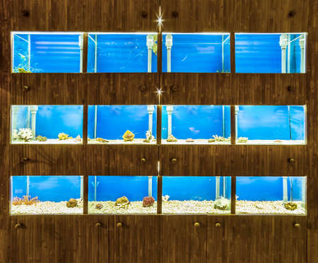 shop aquariums Stock Photo