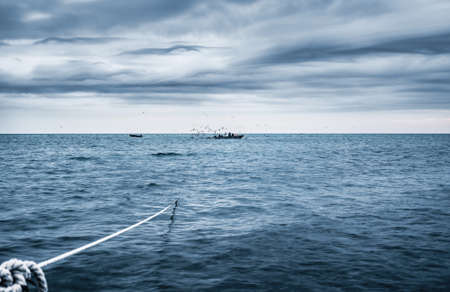 inshore: fishermen check the entangling net