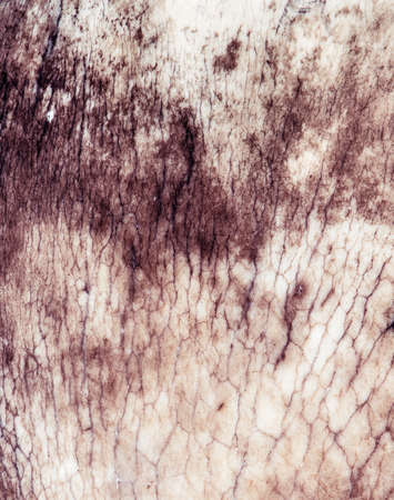 mineralogy: natural grunge background Stock Photo