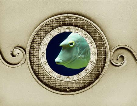 sea fish in vintage metallic porthole