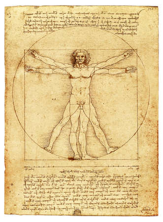 The Vitruvian Man by Leonardo Da Vinci, parchment copy on white