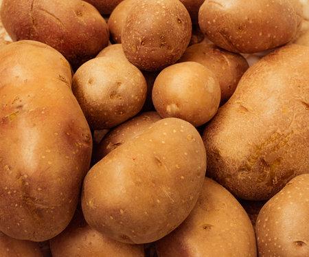 fresh new potato at market