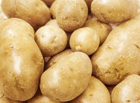 fresh new potato, close up