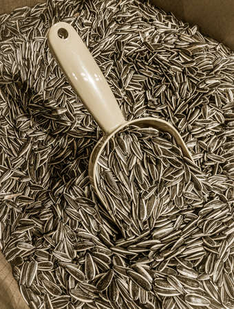sunflower seeds and scoop at market