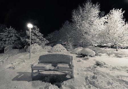 urban park at winter night