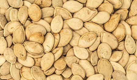 fried pumpkin seeds, close up 免版税图像