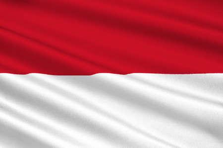 Nuova Guinea: Bandiera di Irian Jaya (Indonesia) - Papua e Papua occidentale. illustrazione 3D