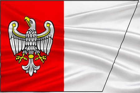pila: Flag of Greater Poland Voivodeship or Wielkopolska Province in west-central Poland. 3d illustration