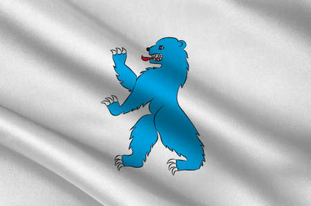 norway flag: Flag of Buskerud is a county in Norway. 3d illustration