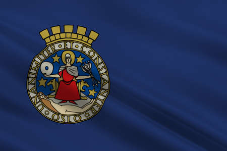 norway flag: Flag of Oslo is the capital and the most populous city in Norway. 3d illustration