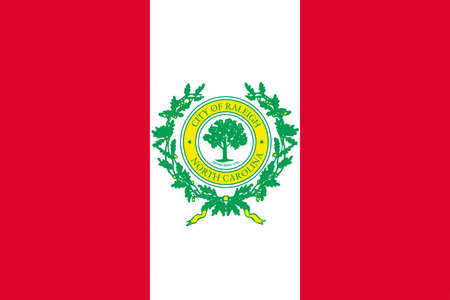 allegiance: Flag of Raleigh is the capital of the state of North Carolina, United States. 3D illustration Stock Photo