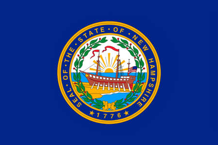 allegiance: Flag of New Hampshire is a state of United States. 3D illustration