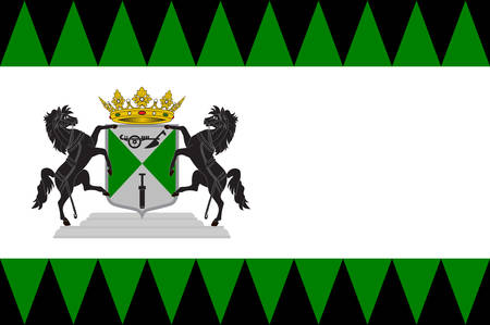 the hague: Flag of Emmen is a municipality and a town in the northeastern Netherlands. Vector illustration Illustration