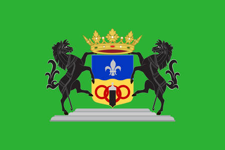 arms folded: Flag of Dronten is a municipality and a town in the central Netherlands, in the province of Flevoland. Vector illustration
