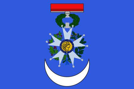 Vlag van Roanne is een gemeente in het departement Loire in Midden-Frankrijk. Vector illustratie