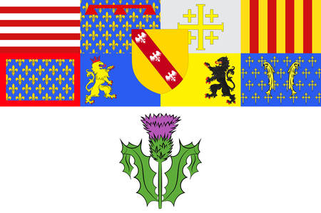 Flag of Nancy is the capital of the north-eastern French department of Meurthe-et-Moselle Vector illustration Illustration