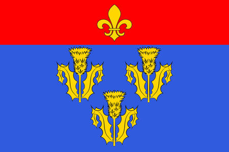 orleans symbol: Vector illustration of flag of Pithiviers is a commune in the Loiret department in north-central France. Illustration