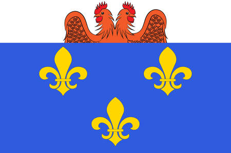 Flag of Versailles is a city in the Yvelines departement in Ile-de-France region, France. Vector illustration
