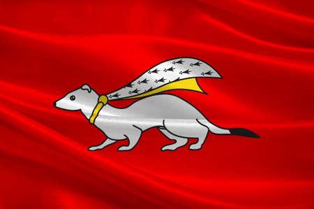 Flaga Vannes - gmina w departamencie Morbihan w Bretanii, w północno-zachodniej Francji. 3D ilustracji