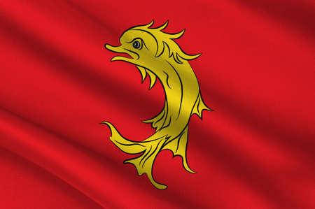 Vlag van de Loire is een departement in het oost-centrale deel van Frankrijk. 3D illustratie