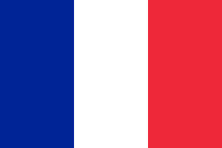 Flag of France is a sovereign state including territory in western Europe. 向量圖像