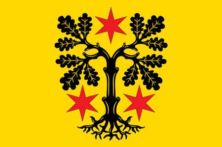 Flag of Odenwaldkreis Illustration