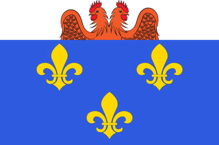 베르사유의 국기는 프랑스의 일 드 프랑스 지역의 이블린 (Yvelines)시에있는 도시입니다. 차원 그림 스톡 콘텐츠