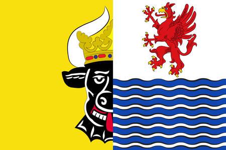 Flag of Mecklenburgische Seenplatte Vector illustration 向量圖像