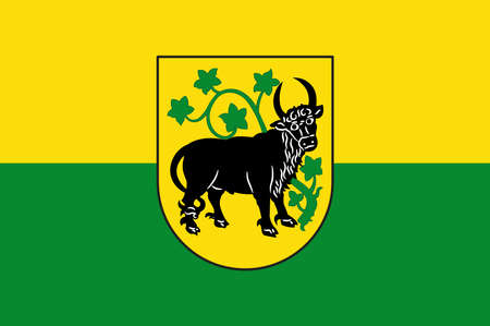 Flag of Guestrow is a town in Mecklenburg-Vorpommern, Germany. Vector illustration