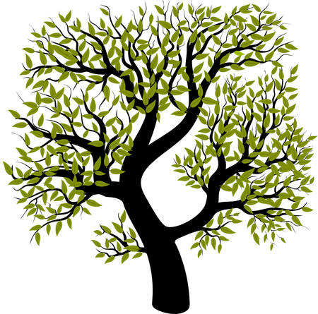 Árbol aislado sobre fondo blanco. Ilustración vectorial