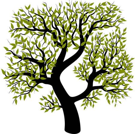 Baum lokalisiert auf weißem Hintergrund. Vektorillustration