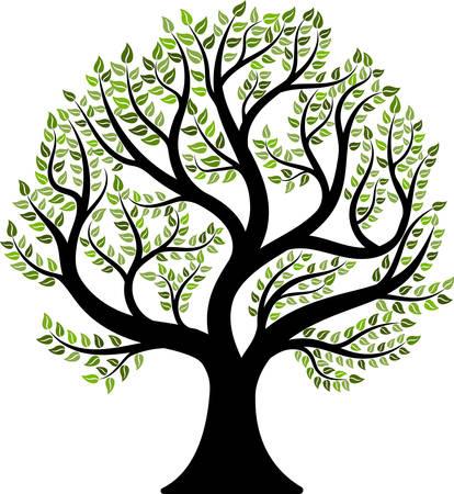 Tree isolated on white background. Vector illustration Vektorové ilustrace